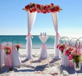 Vennue For Wedding Planning
